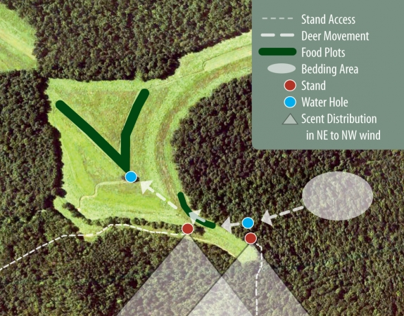 Planning food plots for deer habitat planning resource for How to make a plot plan