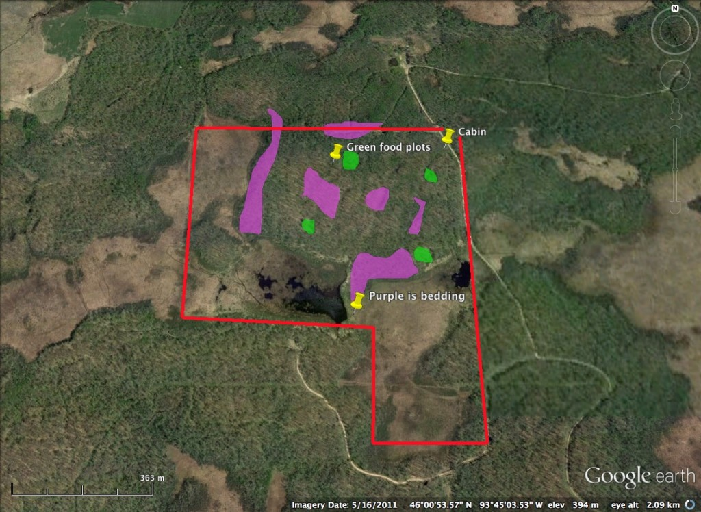 food plots for deer