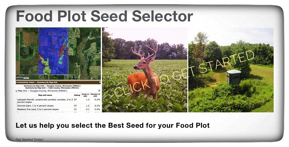 Best Michigan food plot for deer
